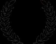 vídeo boda premiado